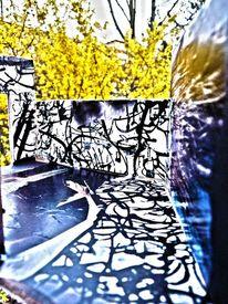 Blüte, Mauer, Fotografie, Surreal