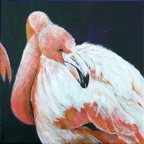 Gewässer, Flamingo, Vogel, Malerei