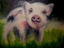 Schwein, Ferkel, Trotz, Malerei