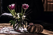 Stillleben, Tulpen, Licht, Vase