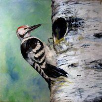Birken, Specht, Malerei, Tiere