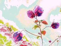 Pastellmalerei, Bougainvillea, Zweig, Blumen