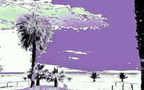Palmen, Sand, Lila, Meer