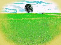 Sommer, Blau, Baum, Wolken