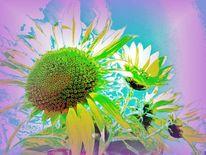 Gelb, Sonne, Grün, Gute laune