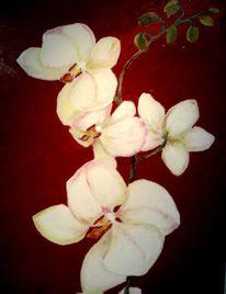 Blumen, Orchidee, Malerei