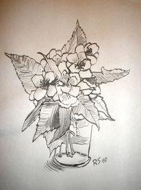 Blüten feder, Zeichnungen, Stillleben