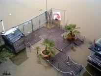 Katzenbuckel, Beachclub, Hafen köln, Rheinhochwasser2011 köln