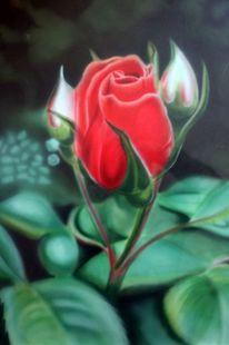 Airbrush, Rose