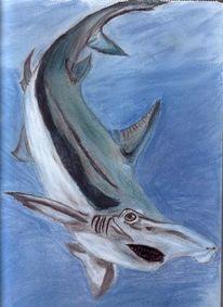 Ozean, Pastellmalerei, Hai, Wasser