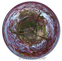 Apfel, Natur, Stimmung, Perspektive