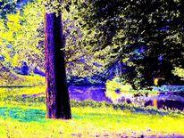 Fotografie, Landschaft, Bremen, Park