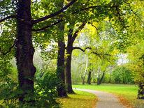 Herbst, Halle, Saale, Fotografie