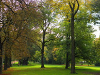 Park, Fotografie, Parkanlage, Kunstfotografie