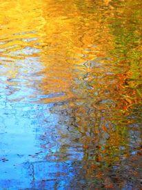 Saale, Fotografie, Baum, Wasser