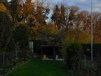 Fotografie, Grün, Garten, Ausblick