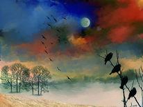 Schlaf, Wolkenspiel, Baum, Vogel