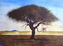 Natur, Aquarellmalerei, Baum, Afrika