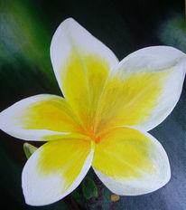 Magnolien, Acryl auf leinwand, Weiß, Blumen