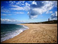 Sommer, Meer, Dünen, Natur