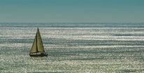 Meer, Glitzern, Segelboot, Segler
