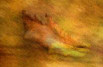 Blätter, Herbst, Herbstfarben, Digitale kunst