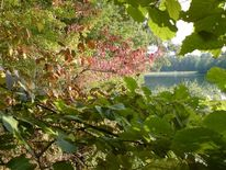 See, Natur, Landschaft, Farben