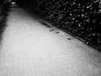 Weg, Fotografie