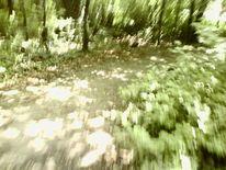 Weg, Grün, Fotografie