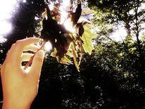 Hand, Sonne, Fotografie