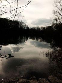 See, Spiegelung, Baum, Wolken
