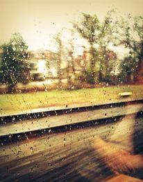 Frau, Regen, Grün, Trauer