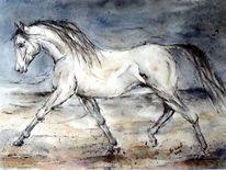 Blau, Araber, Pferdeportrait, Pferdemalerei