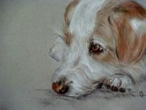 Hund, Hundeportrait, Malerei, Tiere