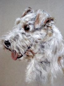 Fox terrier, Hundeportrait, Malerei, Tiere