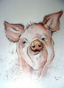 Tierkarikatur, Tierkarikaturen, Tier karikatur, Schwein