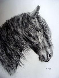 Pferdeportrait, Friese, Pferdemalerei, Malerei