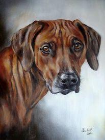 Hundeportrait, Rhodesian ridgeback, Tierportrait, Tiermalerei