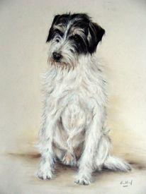 Hundeportrait, Hund, Malerei, Tiere