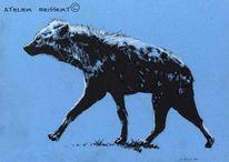 Hyaeninae, Leipzig, Aasfresser, Katzenartige