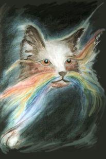 Haare, Neue wege, Lichtkatzen, Farben