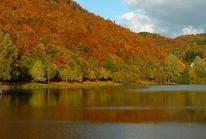 P1020497ab, Fotografie, Herbst
