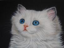 Acrylmalerei, Malerei, Katze