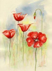 Aquarellmalerei, Blumen, Mohn, Aquarell