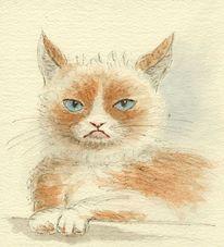 Katze, Aquarellmalerei, Aquarell