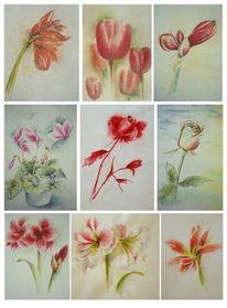 Blumen, Aquarellmalerei, Aquarell, Roots