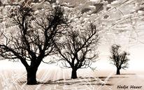 Baum, Zerbrechlich, Tod, Natur
