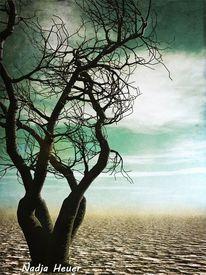 Leben, Mystik, Vergänglichkeit, Baum