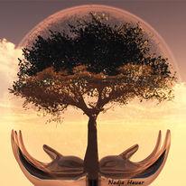 Welt, Experimentell, Baum, Erde