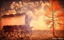 Planwagen, Usa, Wilder westen, Amerika